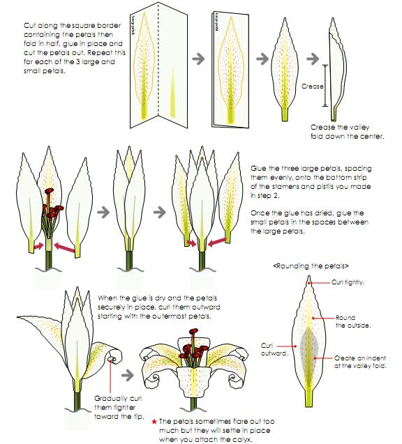 Лилии из бумаги своими руками с пошаговым фото