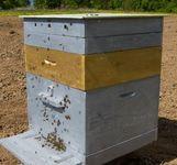 Как сделать пчелиные ульи?