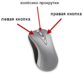 Мышка как сделать картинку на ней